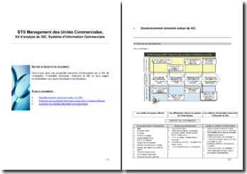 Kit d'analyse du Système d'Information Commerciale (SIC)