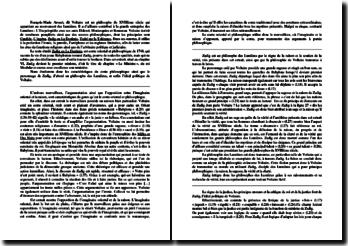 Voltaire, Zadig ou la Destinée, Chapitre VI (Le Ministre)