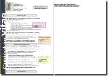 CV détaillé et original avec de légères nuances de couleurs