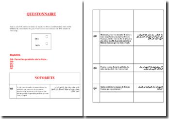 Modèle de questionnaire en marketing