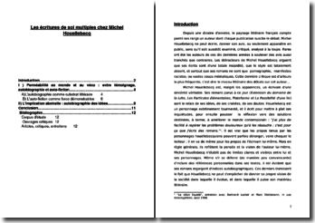 Les écritures de soi multiples chez Michel Houellebecq