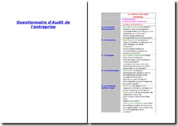 Le contenu d'un audit marketing