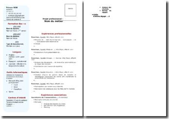 Exemple de CV prêt à remplir