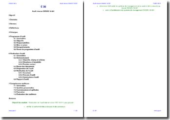 Module formation audit interne SMSST OHSAS 18001 (support)