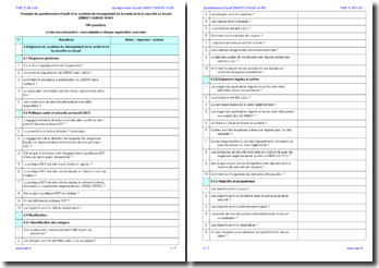 Questionnaire d'audit interne SMSST OHSAS 18001