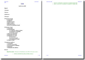 Module formation audit interne SMI QSE (support)