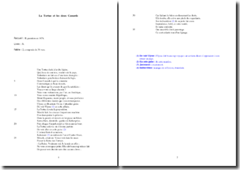 La Fontaine, La Tortue et les deux Canards : étude analytique