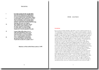Baudelaire, Les Fleurs du Mal, Tableaux parisiens, C, La servante au grand coeur : étude analytique