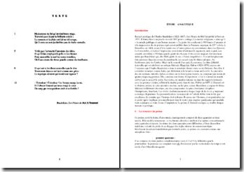 Baudelaire, Les Fleurs du Mal, L'Ennemi : étude analytique
