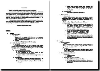Francis Ponge, La Jeune Mère : étude analytique