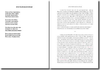 Louise Labé, Sonnet II : commentaire composé