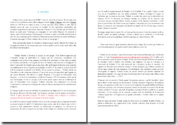 Voltaire, Candide, Chapitre VI : commentaire