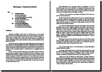 Voltaire, Micromégas : commentaire