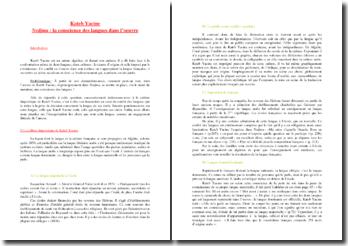 Kateb Yacine, Nedjma : La conscience de la langue dans l'oeuvre via le statut du narrateur