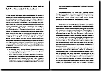 Voltaire, Micromégas, Chapitre 7 : commentaire d'un extrait