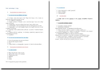 L'éloge : formes, sujets et procédés