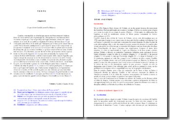 Voltaire, Candide, Chapitre II, Extrait : étude analytique