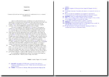 Voltaire, Candide, Chapitre VI, L'autodafé : étude analytique