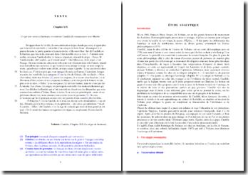 Voltaire, Candide, Chapitre XIX, Le nègre de Surinam : étude analytique