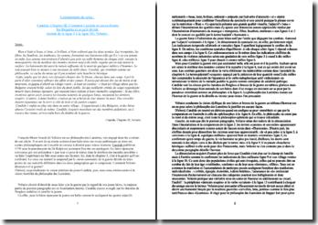 Voltaire, Candide, Chapitre 3, Lignes 1-18 : commentaire