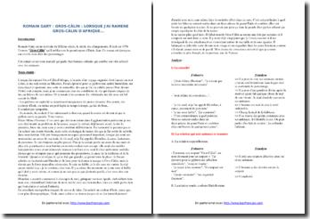 Romain Gary, Gros-Câlin, Extrait : commentaire composé