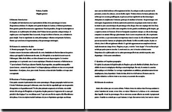 Voltaire, Candide, Chapitre 1 : étude linéaire