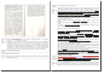 Voltaire, Candide, Chapitre XXX, Extrait : commentaire