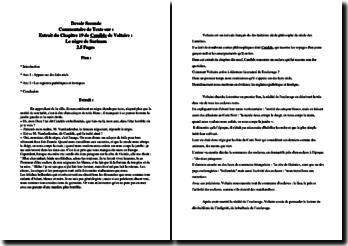Voltaire, Candide, Chapitre 19, Le nègre de Surinam : commentaire
