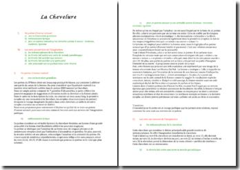Charles Baudelaire, La chevelure : commentaire