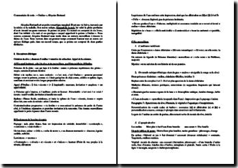 Aloysius Bertrant, Ondine : commentaire