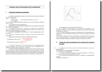 Analyse micro-économique de la production