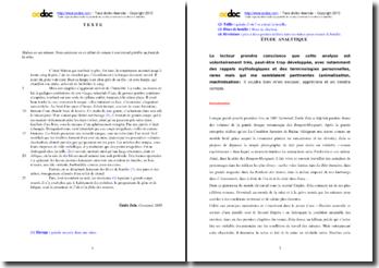 Emile Zola, Germinal, Extrait : analyse