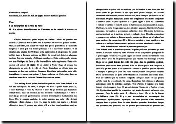 Charles Baudelaire, Les Fleurs du mal, Le cygne