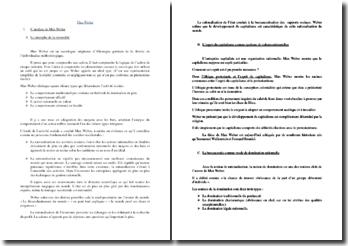 Max Weber : analyse, actualité et limite de la thèse wébérienne