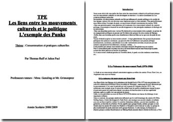 Les liens entre les mouvements culturels et le politique : l'exemple des Punks (TPE)