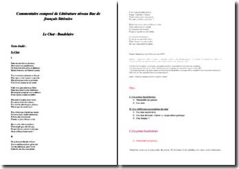 Baudelaire, Le chat : commentaire