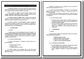 Le contrôle budgétaire et le contrôle de gestion : définitions, limites, etc.