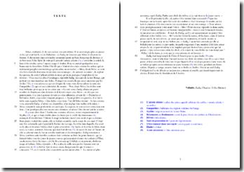 Voltaire, Zadig, Chapitre 11, Le Bûcher : analyse
