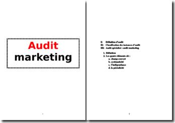 Introduction à l'audit marketing