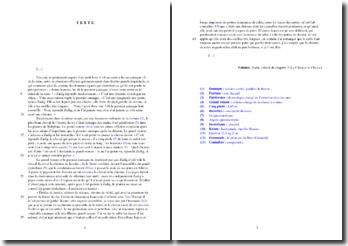 Voltaire, Zadig, Chapitre 3, Extrait : commentaire composé