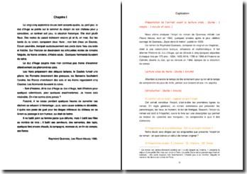 Raymond Queneau, Les Fleurs bleues, Incipit : commentaire