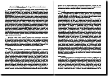 La Rochefoucauld, Réflexions diverses, XI, Du rapport des hommes avec les animaux : explication linéaire