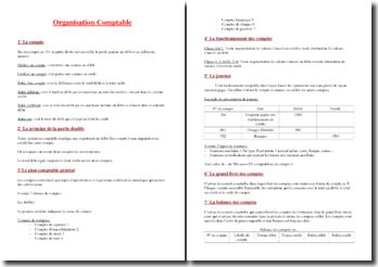 L'organisation comptable : fonctionnement des comptes, journal, etc.