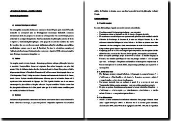 Voltaire, Candide, L'esclave du Surinam : commentaire