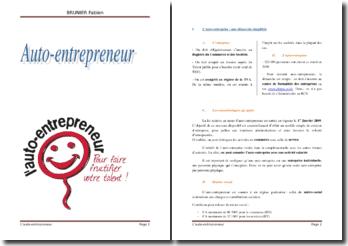 Le nouveau statut d'auto-entrepreneur