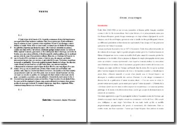 Emile Zola, L'Assommoir, Chapitre VI, Extrait : commentaire