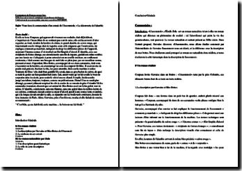 Zola, L'Assommoir, La découverte de l'alambic : commentaire