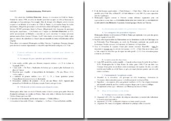 Montesquieu, Lettres persanes, Lettre 85, extrait : commentaire