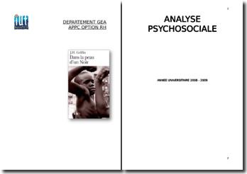 J.H. Griffin, Dans la peau d'un Noir : Analyse psychosociale