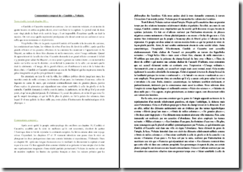 Voltaire, Candide, Chapitre 18 : commentaire